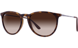 Ray-Ban ERIKA RB4171 - 865/13 Sunglasses